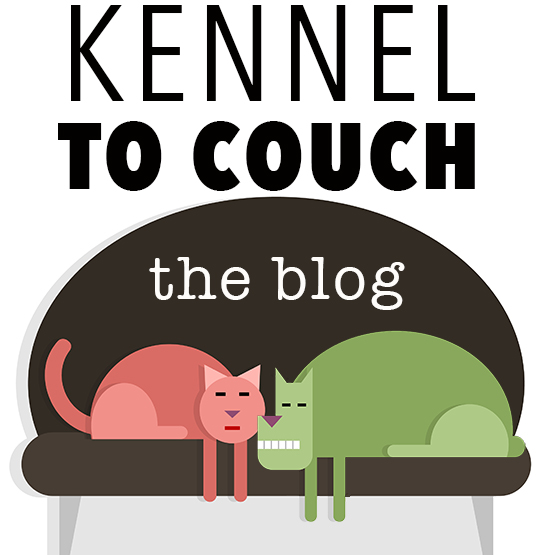 Kennel to Couch blog LOGO