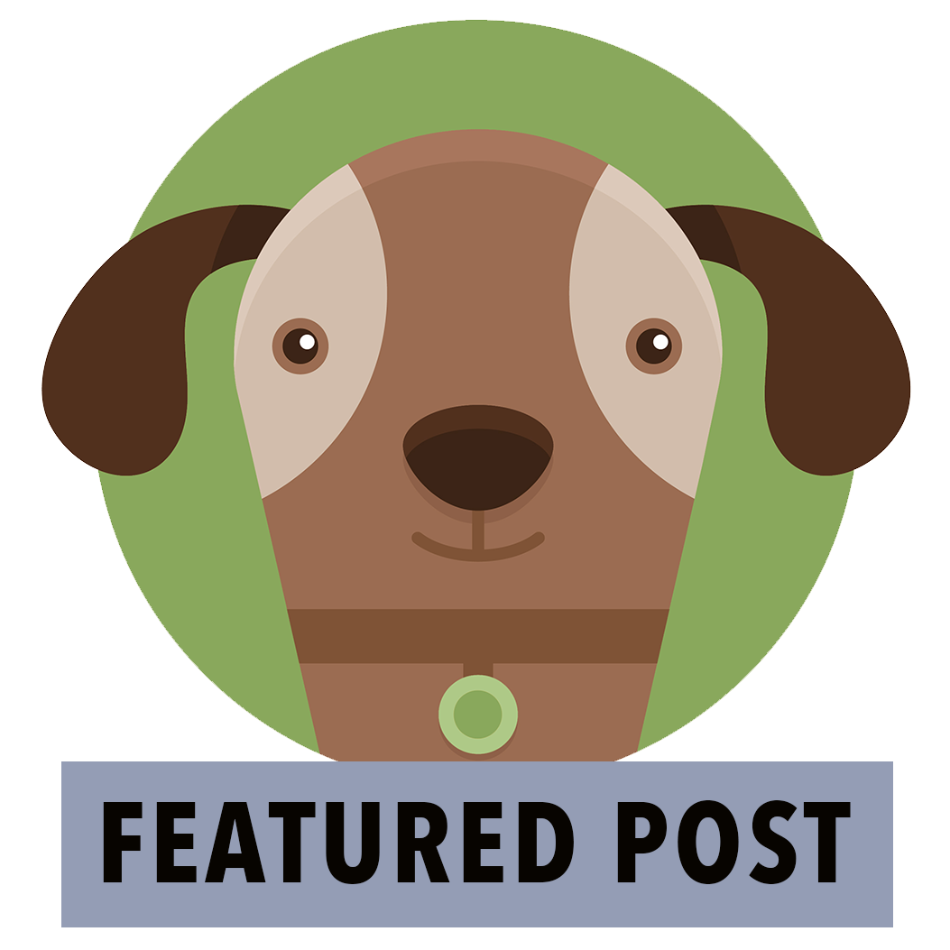 Featured Post Dog 1053